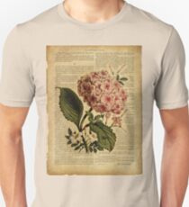 Botanical print, on old book page - flowers- Hydrangea blossom T-Shirt