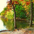 Autumn by Marija