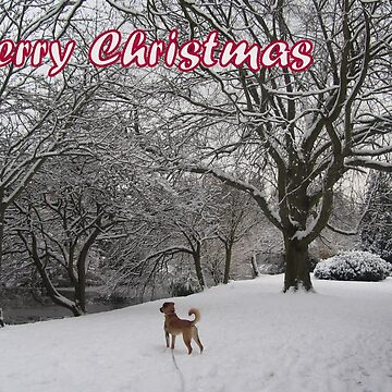 Merry Christmas - dog 01 by hartrockets