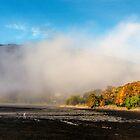 Golden Light of Autumn by Lynn Bolt