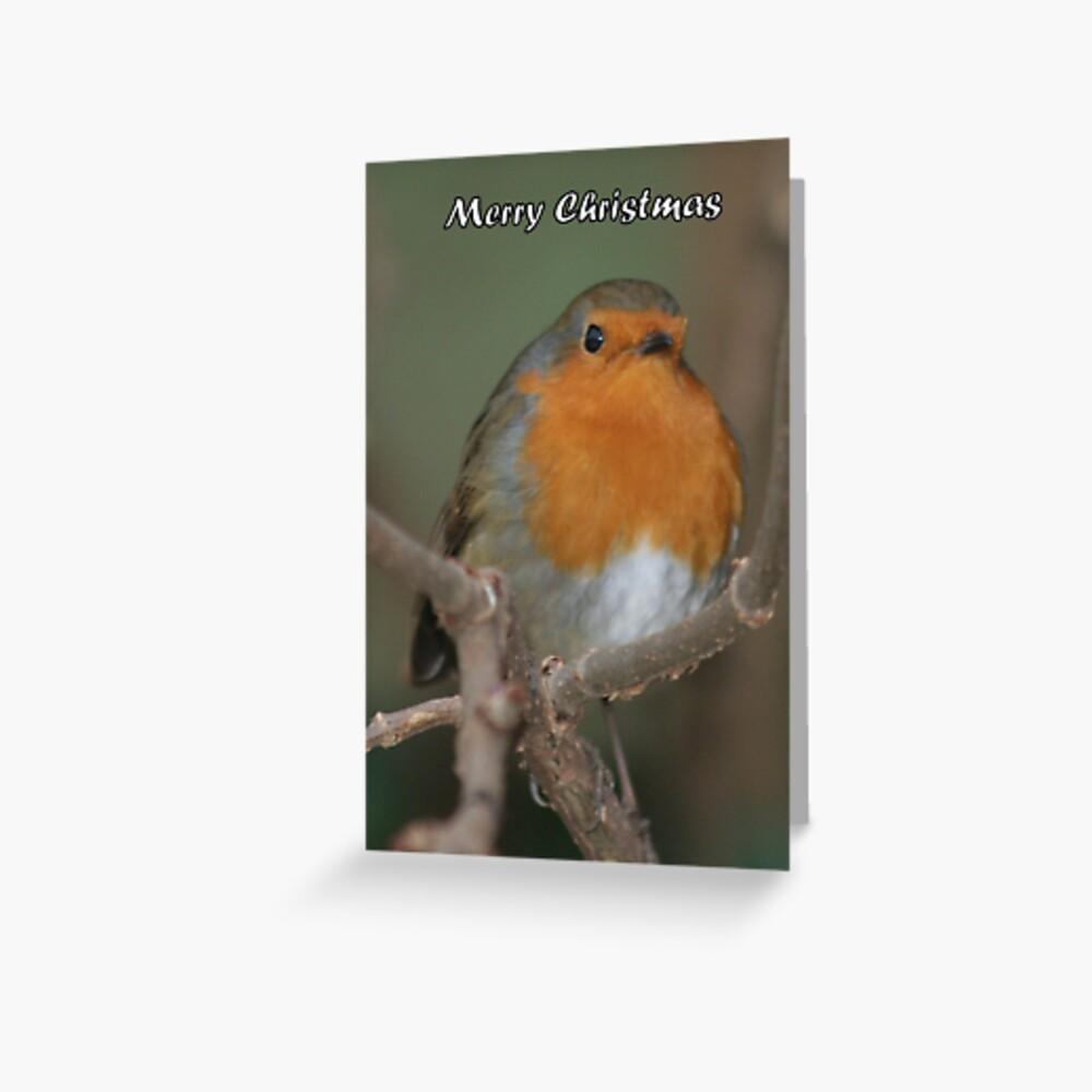 Merry Christmas - Robin 02 Greeting Card