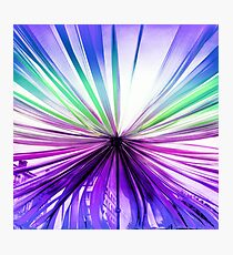 Canopy of Ribbon Photographic Print