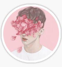 Troye Sivan Wild - Pink Sticker