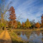 USA. Washington D.C.. Kenilworth Park and Aquatic Gardens. Pathway. by vadim19