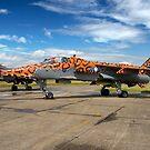 SEPECAT Jaguar GR.3A XX119/EB by Colin Smedley