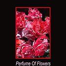 Perfume Of Flowers by Joy Watson
