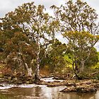 Wannon River by Bette Devine
