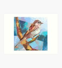 Bird 29 Art Print