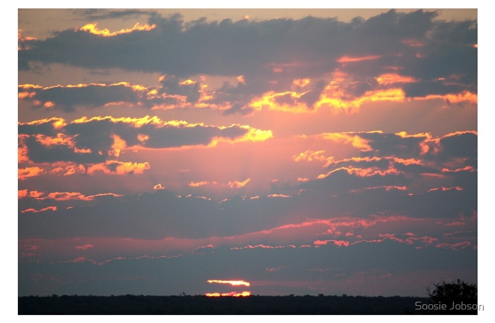 Okonjima Sunset by Soosie Jobson