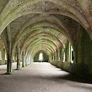 Fountains Abbey by Denzil
