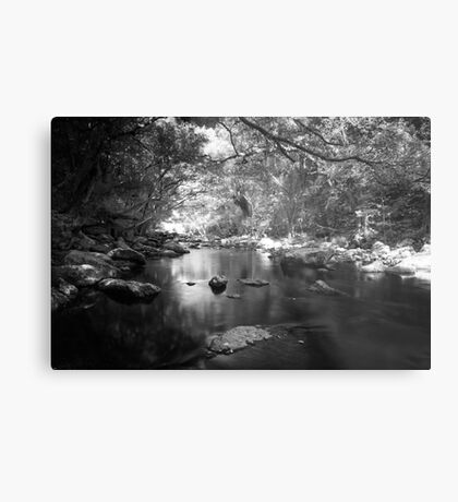 Freshwater Creek Metal Print