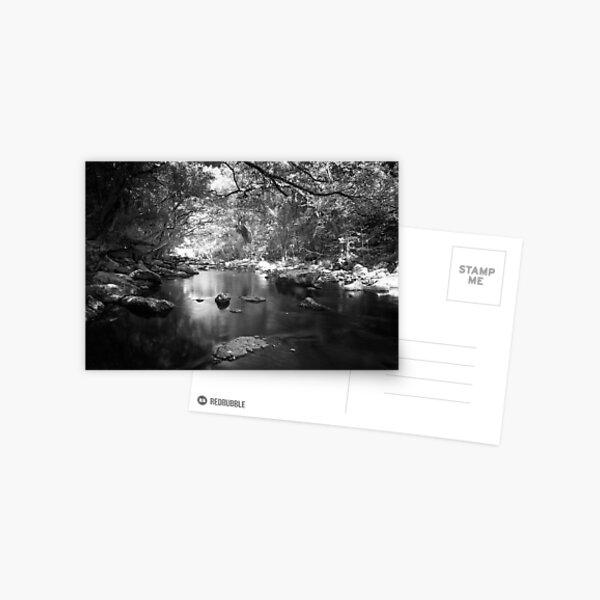 Freshwater Creek Postcard