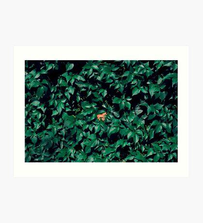 Orange Pferd im Busch Kunstdruck