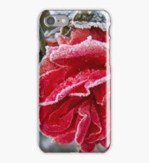 Frosted Red Rose iPhone Case/Skin