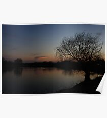 A Bare Willow Tree Poster