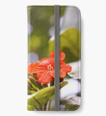 St Lucia Beauty iPhone Wallet