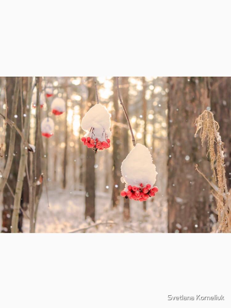 Rowan berries in the snow by SvetlanaKorneli