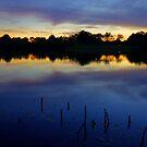 Evening Shadows by Gregory Ballos