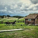Adeline Hornbeck Homestead, Florissant Fossil Beds NM by Gregory Ballos