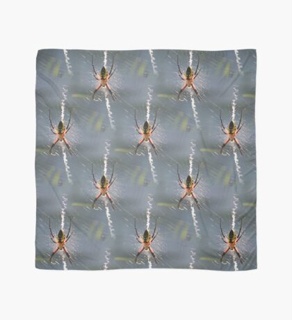 Colorful Garden Spider On Web Scarf