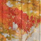 Autumn Leaves with Wooden Planks by Beverly Claire Kaiya