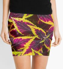 Coleus or Painted Nettle  Mini Skirt