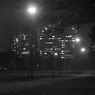 Foggy nights by MarianBendeth
