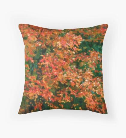 The Beauty of Autumn Out My Window Throw Pillow