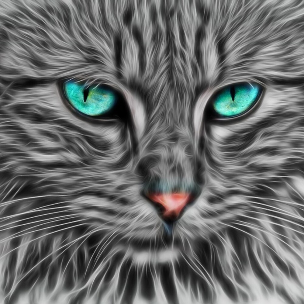 "Grey Fur Blue Eyed Cat Drawing"" by Rebuff"