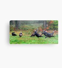 Wild Turkeys Feeding Along The Forest Metal Print