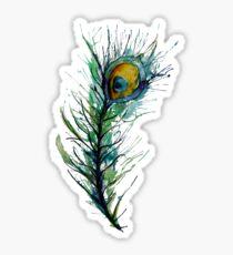 peacock rainbow. Sticker