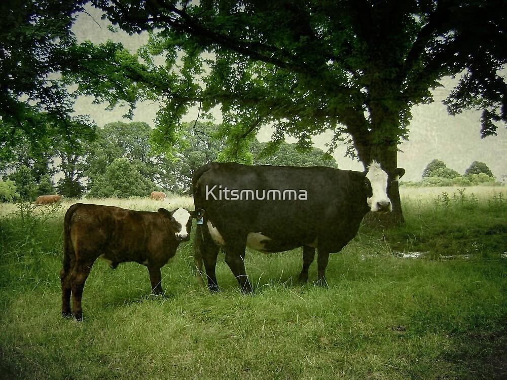Calving Season by Kitsmumma