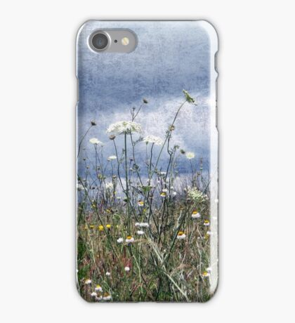 Summertime in the North West iPhone Case/Skin