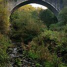 Causey Arch by Richard Winskill