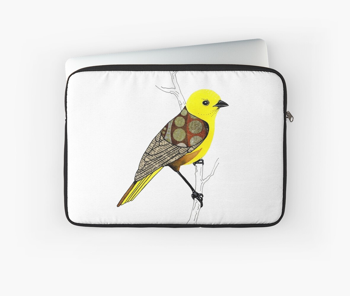 Mohua / Yellowhead Bird by scatterlings