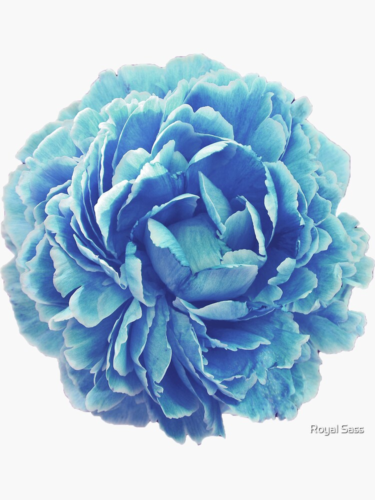 Cinderella Blue Flower by theroyalsass