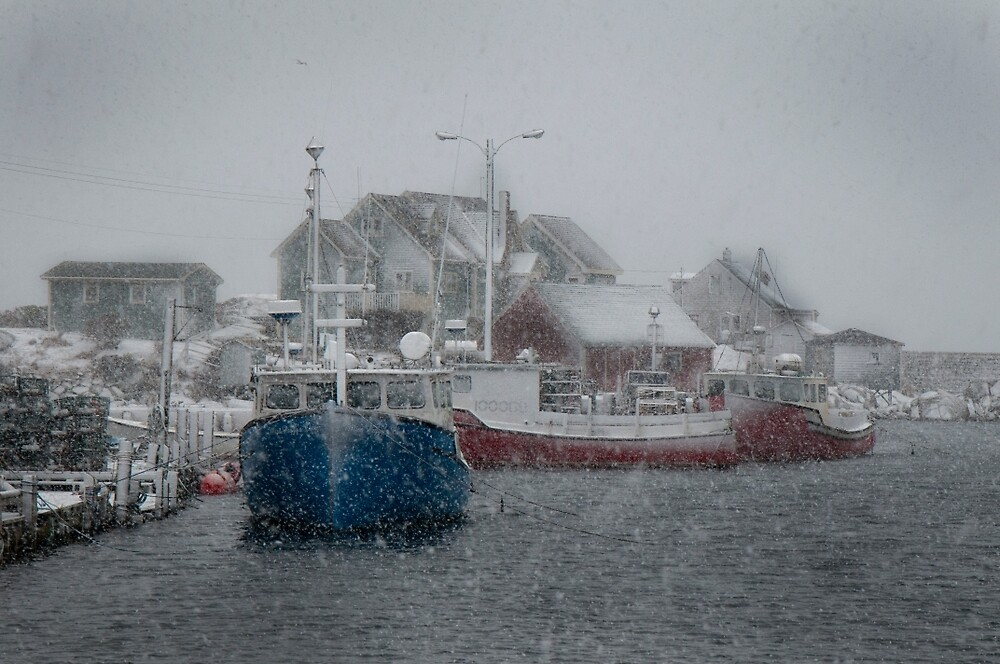 Peggy's Cove Snow Storm by Roxane Bay