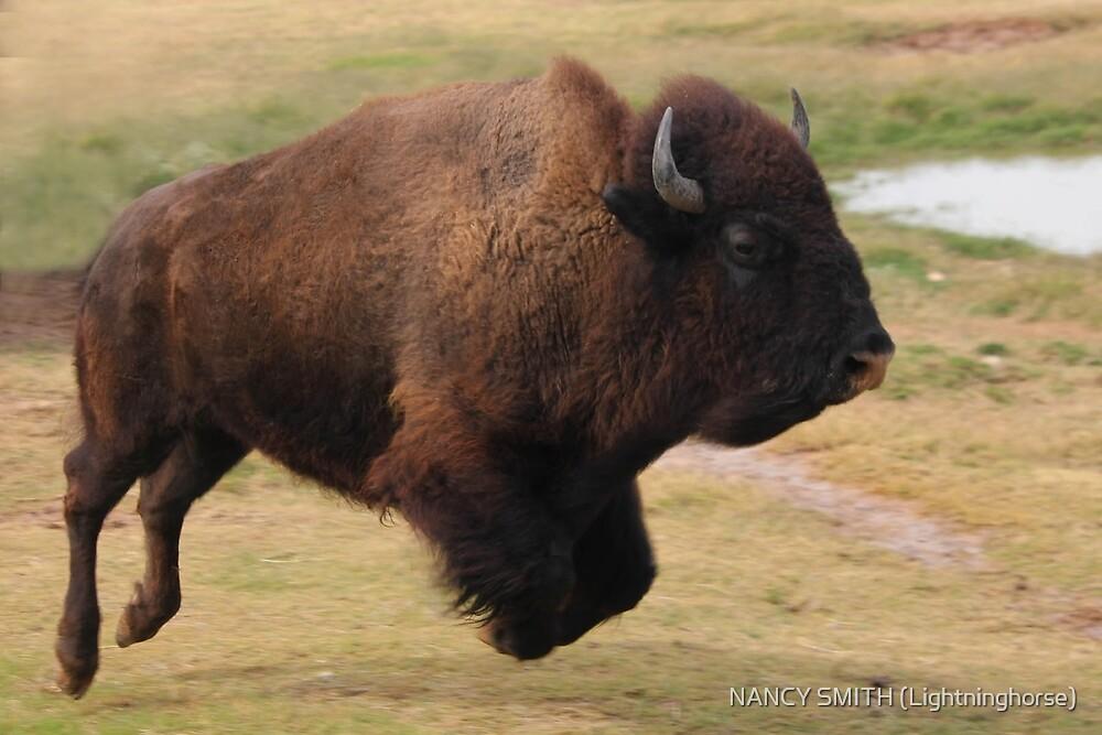 Buffalo Jump by NANCY SMITH (Lightninghorse)