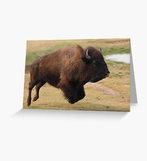 Buffalo Jump Greeting Card