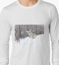 My Wolf : The kiss of the wolf T-Shirt