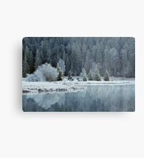 Whitened by frost Metal Print