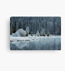 Whitened by frost Canvas Print
