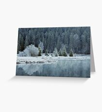 Whitened by frost Greeting Card
