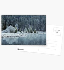 Whitened by frost Postcards