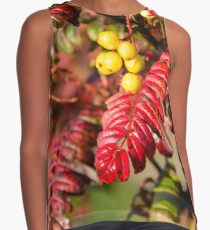 Autumn Berries and Leaves Contrast Tank