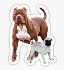 Pit bull pug 2 Sticker