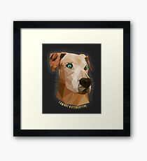 Pit Bulls - Not A Stereotype  Framed Print