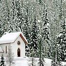 """""""White Christmas"""" in Misurina - Italy by Arie Koene"""
