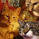 The Year of the Cat by Margaret Bryant