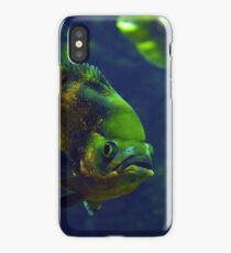 Fishy Colors iPhone Case/Skin